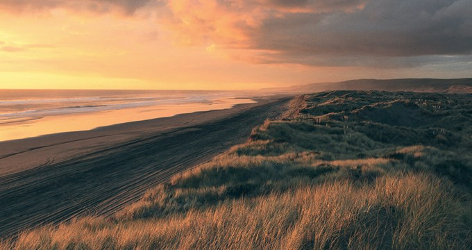 nz beach and dunes at sunset